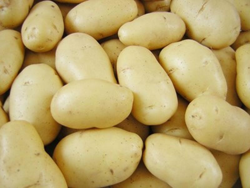 لهذه الأسباب ... احذري من تخزين البطاطا في الثلاجة