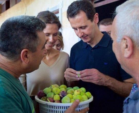 الأسد يستعرض برفقة زوجته ويأكل التين في طرطوس