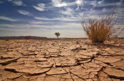 تقرير صادم : الحياة في الاردن ستكون مرعبة وشمال المملكة سيصبح صحراء جرداء قاحلة
