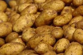 وزارة الزراعة تشكل لجنة لإعادة فحص البطاطا اللبنانية