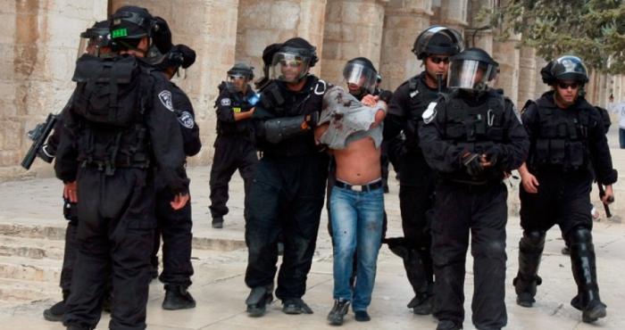 العدو يعتقل 12 مُصليا من داخل الأقصى لقراءتهم القرآن بصوت مرتفع