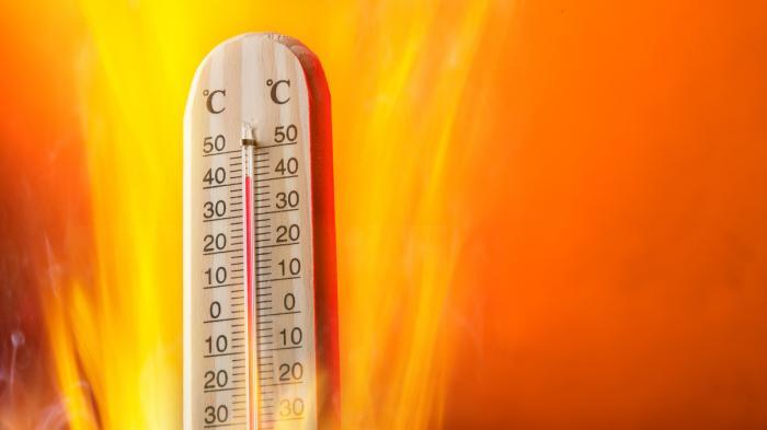 أجواء حارة وجافة بمعظم مناطق المملكة