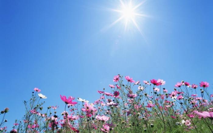 طقس حار اليوم وانخفاض طفيف على الحرارة غداً