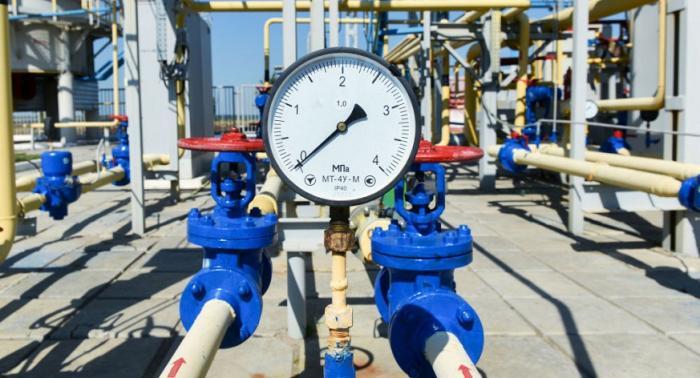 ضخ الغاز المصري في 2019 سيخفض بند فق أسعار الوقود