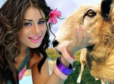 مصري يطلق زوجته بسبب خروف