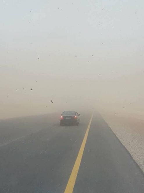 إسعاف جوي لمصاب بحادث سير على الصحراوي