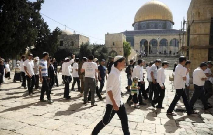 مستوطنون يقتحمون باحات المسجد الأقصى ويدخلون خرائط للهيكل