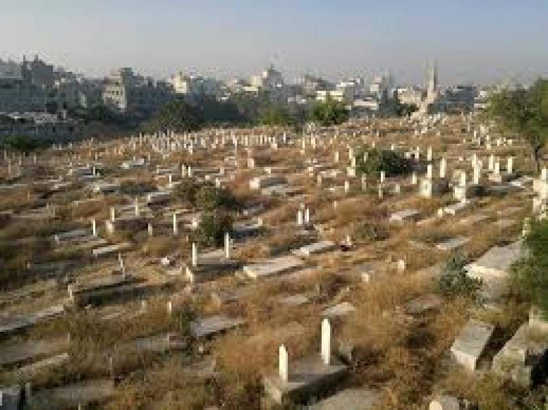 الداود.. لن يتم نقل رفات جثث دفنت على ارض وقفية في كفرأسد في اربد