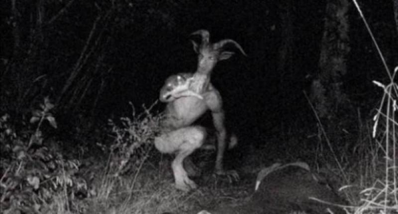 فيديو: مخلوق غريب نصف إنسان ونصف ماعز يثير ضجة !