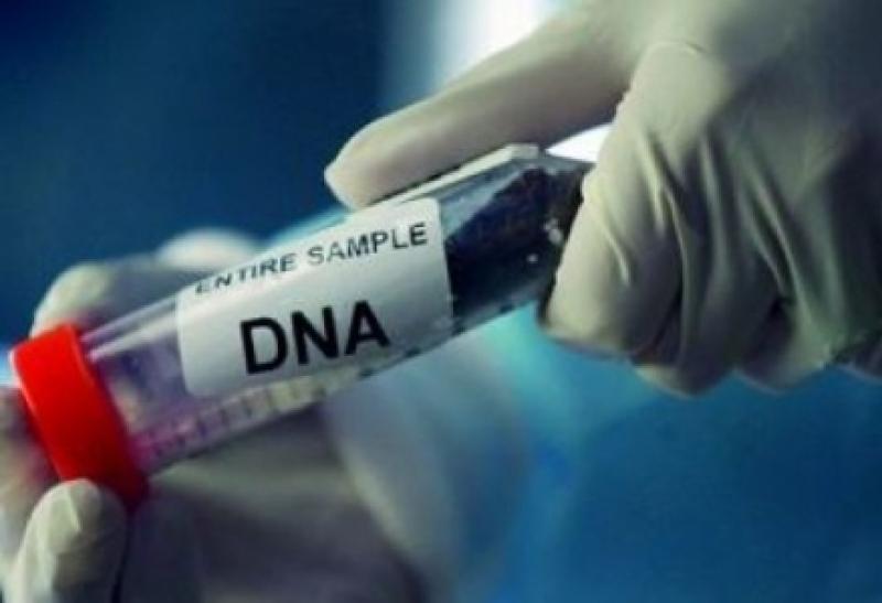 فحص 'DNA' لعائلات مشتبه بأن أبنائها قُتلوا بعملية إربد