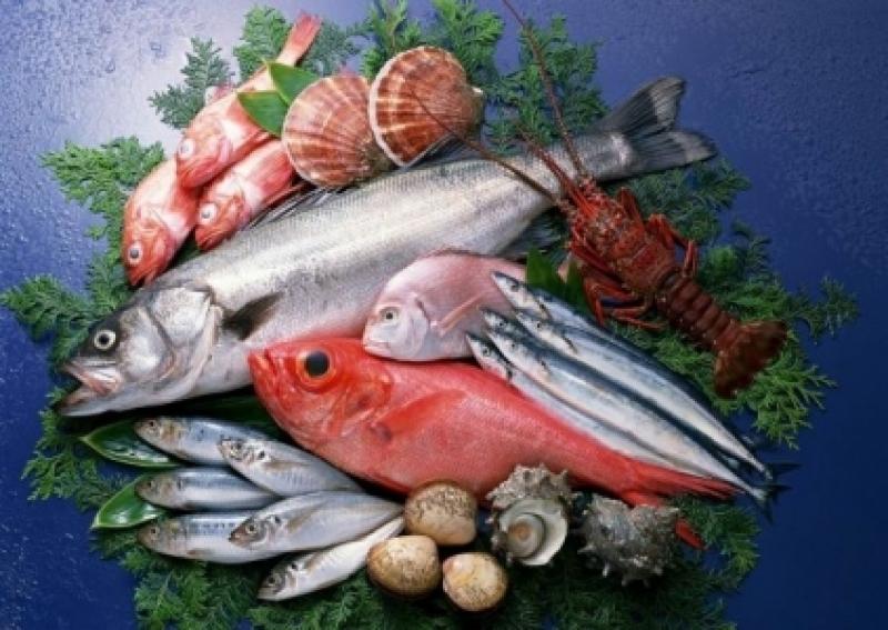 ضبط 220 كيلو من الأسماك الفاسدة فى احد أشهر المولات في مدينة اربد