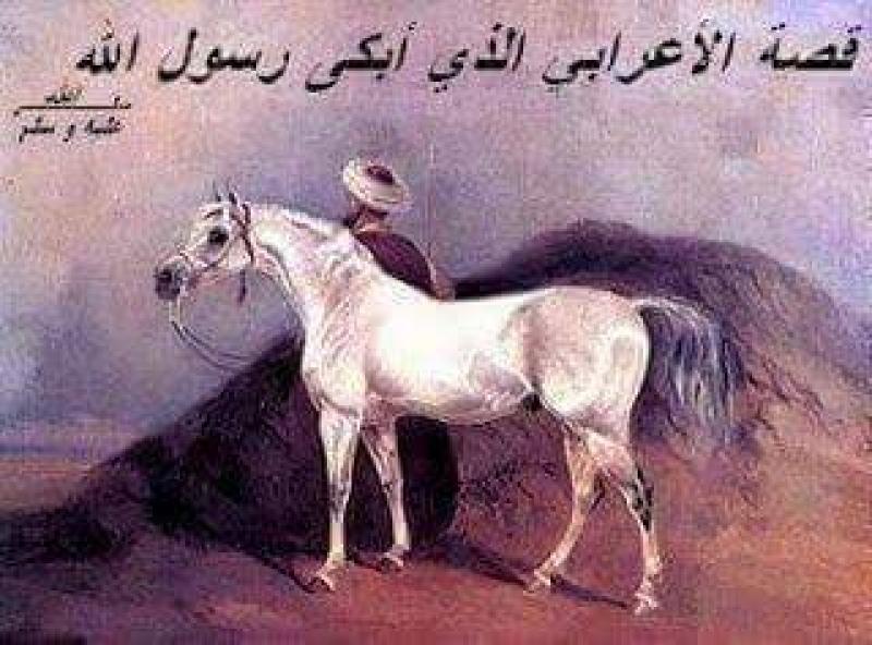 أعرابي ابكي النبي ( ص )...!!