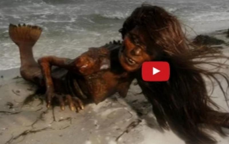 بالفيديو .. أشياء غريبة وجدها الناس على الشاطئ